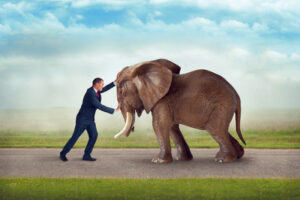 business man challenge as big as an elephant