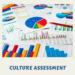 Workplace Cultural Assessment Results