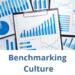 measure benchmark workplace culture